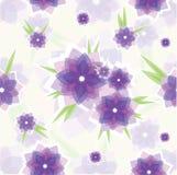 Reticolo di fiore viola senza giunte Fotografie Stock Libere da Diritti