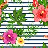 Reticolo di fiori tropicale Fotografia Stock