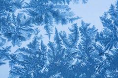 Reticolo di Frost su vetro Fotografia Stock Libera da Diritti