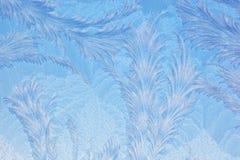 Reticolo di gelo di finestra Immagini Stock