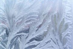 Reticolo di gelo di finestra su vetro Fotografie Stock Libere da Diritti