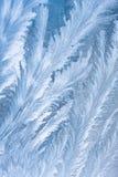 Reticolo di gelo sul vetro di finestra Fotografia Stock Libera da Diritti