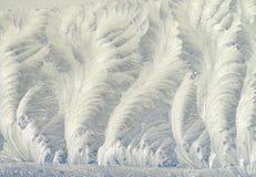 Reticolo di gelo sul vetro di finestra Immagine Stock Libera da Diritti