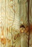 Reticolo di legno Immagini Stock Libere da Diritti