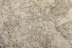 Reticolo di marmo Fotografia Stock Libera da Diritti