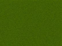 reticolo di verde di erba Immagini Stock
