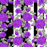 Reticolo floreale astratto senza giunte Rose lilla su fondo in bianco e nero Immagine Stock Libera da Diritti