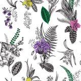 Reticolo floreale dell'annata senza giunte di vettore royalty illustrazione gratis