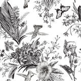 Reticolo floreale dell'annata senza giunte di vettore Fiori ed uccelli esotici illustrazione vettoriale