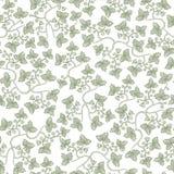 Reticolo floreale dell'annata senza giunte di vettore Le siluette stilizzate dell'uva va su un fondo bianco Fotografia Stock