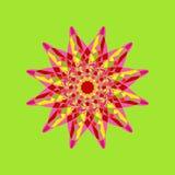 Reticolo floreale rotondo ornamentale Ornamento variopinto Immagine Stock