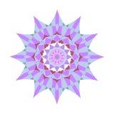 Reticolo floreale rotondo ornamentale Ornamento variopinto con l'annata Immagine Stock Libera da Diritti