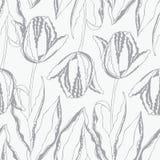 Reticolo floreale senza giunte con i tulipani royalty illustrazione gratis