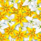 Reticolo floreale senza giunte Disposizione caotica dei fiori Fiore bianco e giallo del giglio su un fondo blu luminoso immagine stock libera da diritti