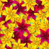 Reticolo floreale senza giunte Disposizione caotica dei fiori Fiore rosso e giallo del giglio su un fondo blu luminoso fotografia stock