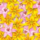 Reticolo floreale senza giunte Disposizione caotica dei fiori Rosa e fiore giallo del giglio su un fondo rosa luminoso fotografia stock libera da diritti