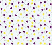 Reticolo floreale senza giunte Struttura dei fiori Immagini Stock