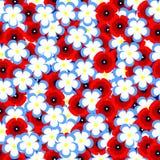 Reticolo floreale senza giunte Struttura dei fiori Immagine Stock