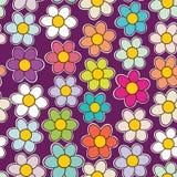 Reticolo floreale senza giunte Struttura dei fiori Margherita Fotografie Stock Libere da Diritti