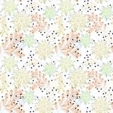 Reticolo floreale senza giunte Succulente su un fondo bianco Fotografia Stock