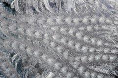 Reticolo gelido Fotografie Stock Libere da Diritti