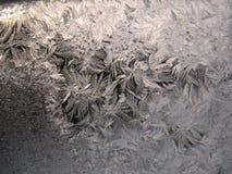 Reticolo gelido sulla finestra di inverno Fotografie Stock