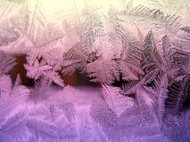 Reticolo ghiacciato su vetro Fotografia Stock Libera da Diritti