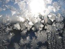 Reticolo naturale gelido su vetro Fotografie Stock