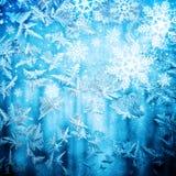 Reticolo naturale gelido su vetro Immagine Stock