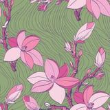 Reticolo senza cuciture con i fiori della magnolia del disegno Fotografie Stock Libere da Diritti