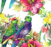 Reticolo senza cuciture con i pappagalli ed i fiori Fotografie Stock Libere da Diritti
