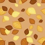 Reticolo senza cuciture con le foglie di autunno. Immagine Stock Libera da Diritti
