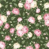 Reticolo senza cuciture con le rose rosa e bianche. Immagine Stock