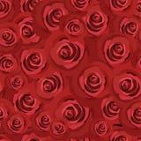 Reticolo senza cuciture con le rose rosse. Vettore ENV 8. Fotografia Stock