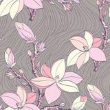 Reticolo senza cuciture dell'annata con il fiore della magnolia Fotografia Stock