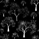 Reticolo senza cuciture di vettore delle siluette dell'albero Fotografia Stock