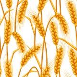 Reticolo senza giunte con frumento Orecchie dorate naturali di immagine agricola di orzo o di segale illustrazione di stock