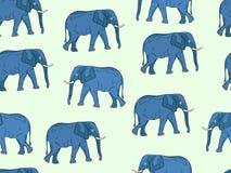 Reticolo senza giunte con gli elefanti Fotografie Stock