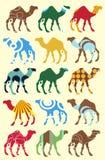 Reticolo senza giunte con i cammelli Immagine Stock Libera da Diritti