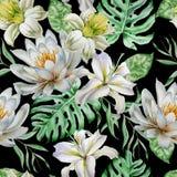 Reticolo senza giunte con i fiori nasals giglio Monstera Illustrazione dell'acquerello royalty illustrazione gratis