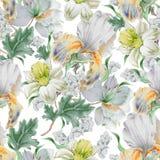 Reticolo senza giunte con i fiori nasals iride giglio Illustrazione dell'acquerello royalty illustrazione gratis