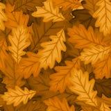 Reticolo senza giunte con i fogli della quercia di autunno. PE di vettore Fotografia Stock Libera da Diritti