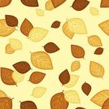 Reticolo senza giunte con i fogli di autunno. Illust di vettore Fotografia Stock Libera da Diritti