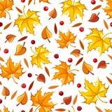 Reticolo senza giunte con i fogli di autunno Illustrazione di vettore Fotografia Stock Libera da Diritti