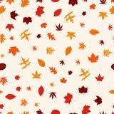 Reticolo senza giunte con i fogli di autunno variopinti Fotografie Stock Libere da Diritti
