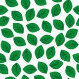 Reticolo senza giunte con i fogli verdi Fotografie Stock
