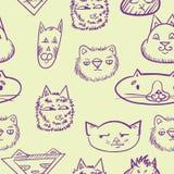 Reticolo senza giunte con i gatti Gatti di scarabocchio fronti divertenti dei gatti Immagini Stock Libere da Diritti
