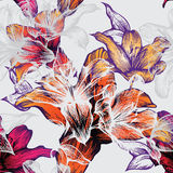 Reticolo senza giunte con i gigli di fioritura, mano-drawin Fotografie Stock