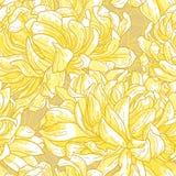 Reticolo senza giunte con il crisantemo Fotografia Stock