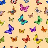 Reticolo senza giunte con la farfalla Fotografie Stock